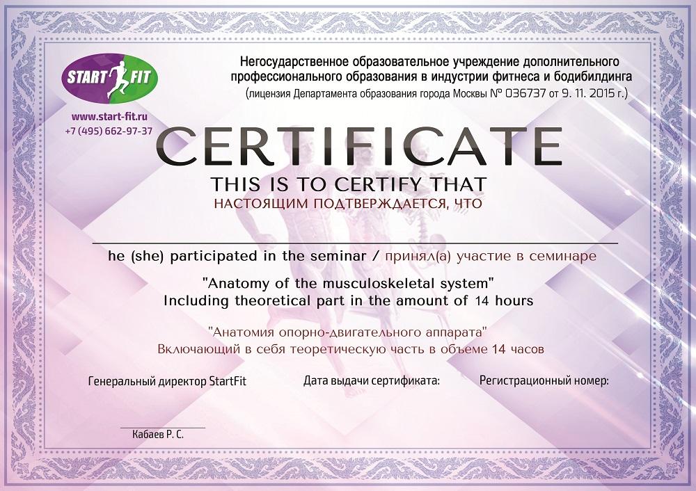 Сертификаты по семинарам и отдельным дисциплинам курса.