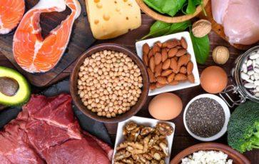 Влияние белка на почки и печень